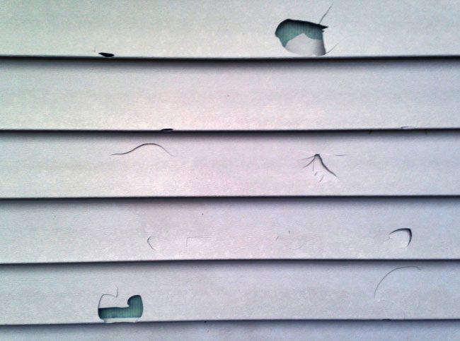 Cracked Vinyl Siding