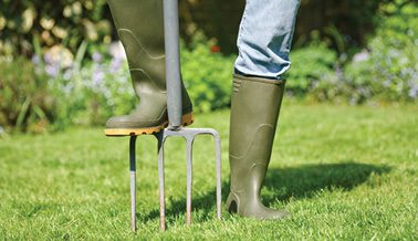 Prepare Lawn for Spring and Summer