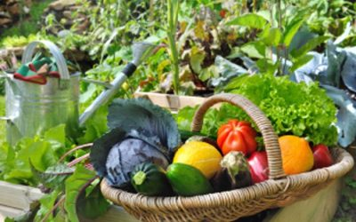 It Takes a Village: How Gardeners Can Help