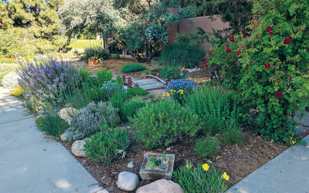 Garden Award for demonstration garden is a bright spot during tough times