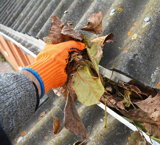 Ask the Expert: Fall Home Maintenance