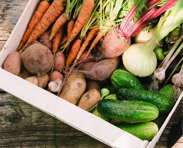 Gardeners with generous hearts