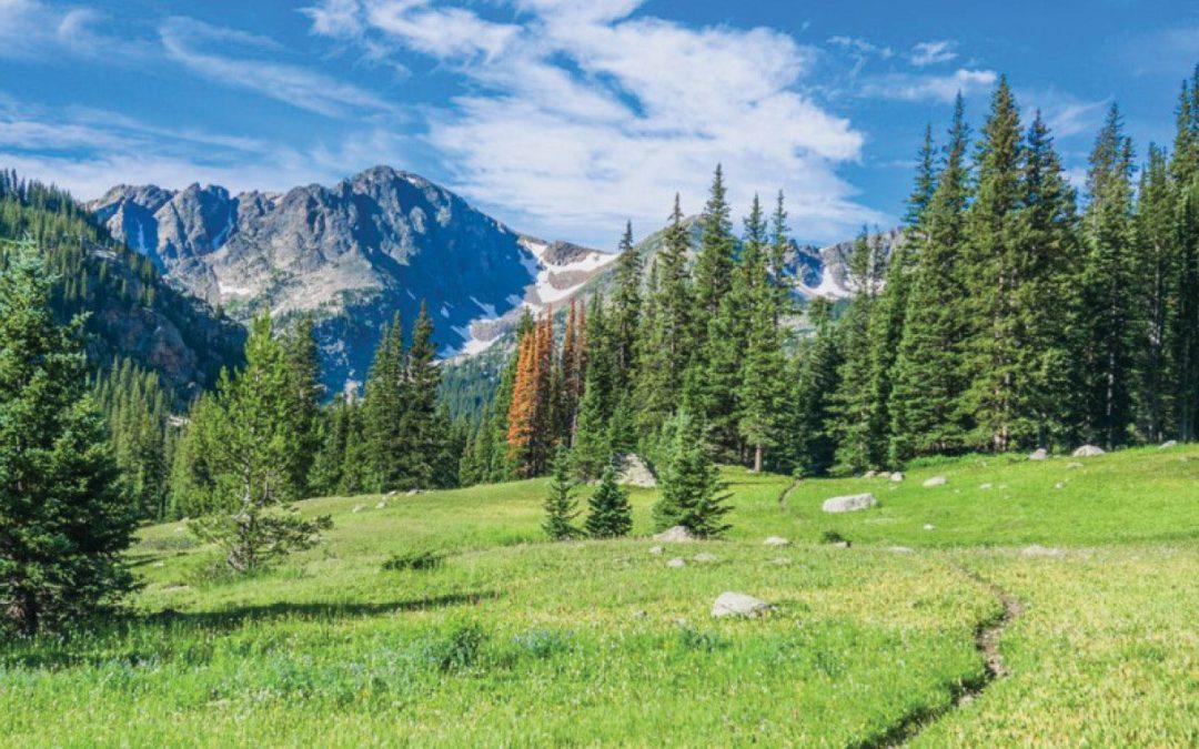 Colorado No. 16 of all U.S. states