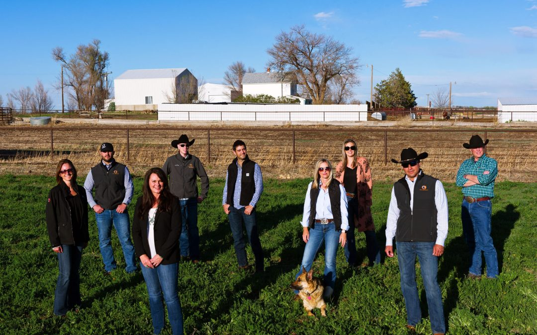 C3 Real Estate Solutions announces new Farm and Ranch Division