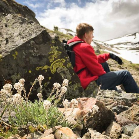 Hiking Montana's Absaroka-Beartooth Wilderness Trails