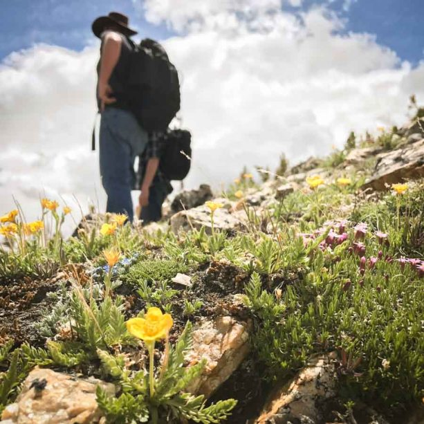beautiful-images-that-will-make-you-want-to-visit-montanas-absaroka-beartooth-wilderness-athomeonthego.com-travel-blog-6
