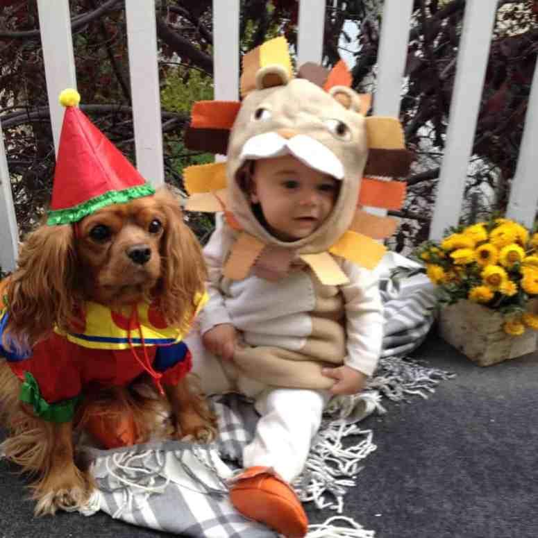 athomewithashley Halloween Costumes 2015