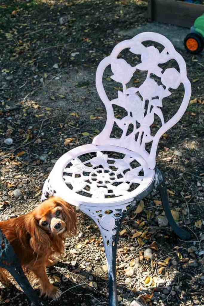 cast iron outdoor chair makeover and chairs. Do you have some of these cute metal vintage sets? Well, I have an easy DIY for your home! It includes chal paint that'll totally makeover your outdoor furniture.