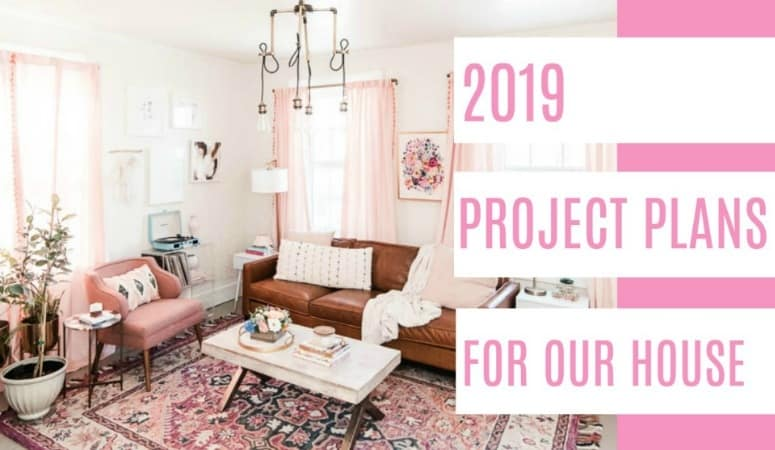Project Plans for 2019