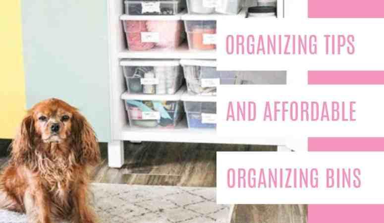 Organization Tips and Affordable Organizing Bins