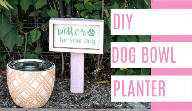 diy dog bowl planter. Want a cute pet bowl for your outdoor patio? It's an easy project with a holder for the bowl and how to make a water sign. Click through for the full tutorial.