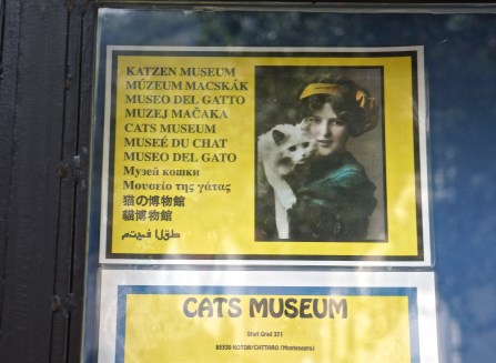 Montenegro has a cat museum, the first I've ever seen.