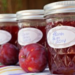 Canning plum jam is easy, fun, and leads to delicious plum recipes! Learning to can fresh plums will give you the opportunity to enjoy them all year long!