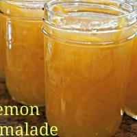 Lemon Marmalade - Canning for Christmas
