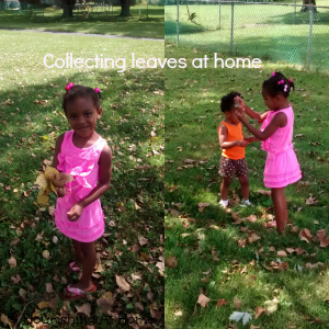 leaf collecting 2