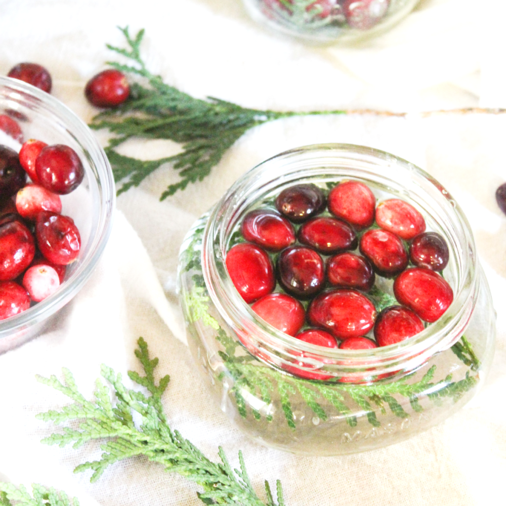 diy-holiday-centerpiece-greenery-cranberries