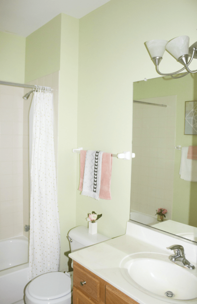 Small Bathroom Refresh - Modern Decor - At Home With Zan