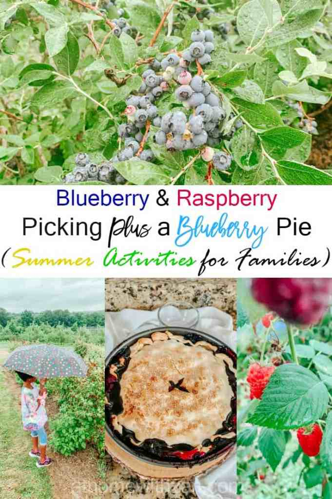 Blueberry Raspberry Picking and a Blueberry Pie