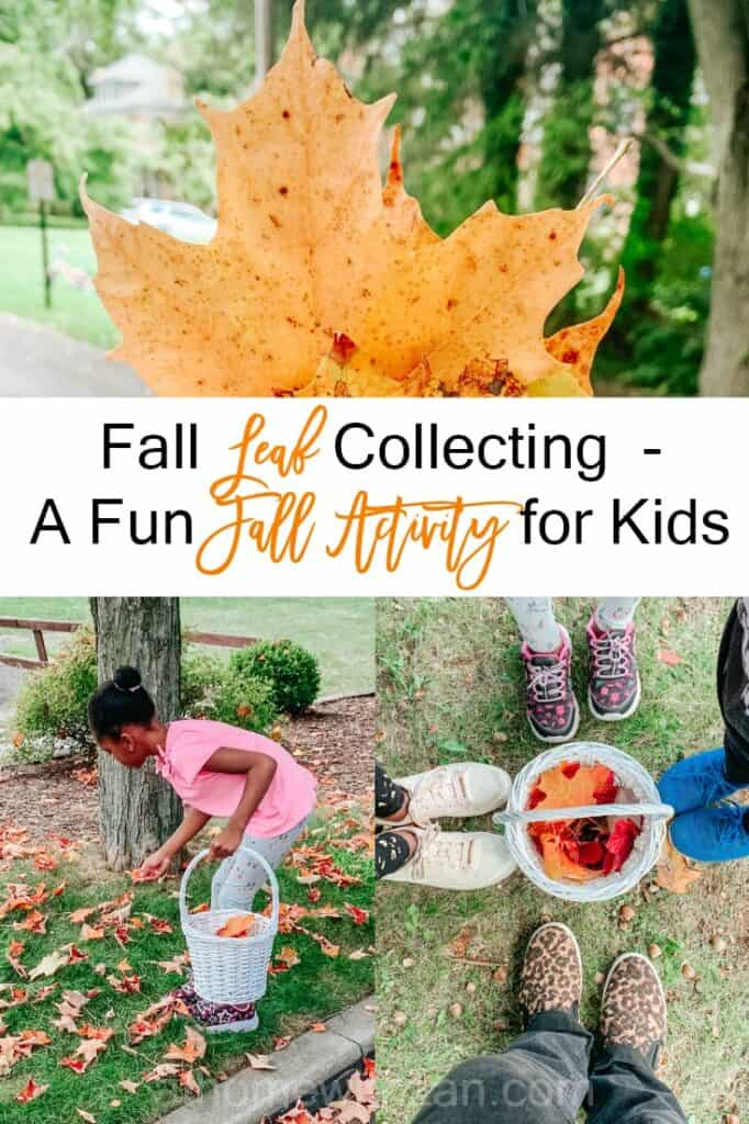 Collecting Fall Leaves with the Kids - Fall Fun Activity for Kids - athomewithzan