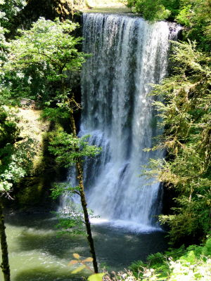 The Trail of Ten Falls at Silver Falls State Park - Silverton, OR