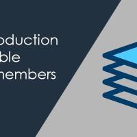 flexible array member in c