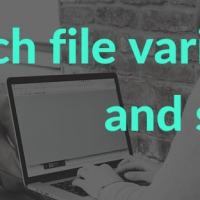 batch file variables