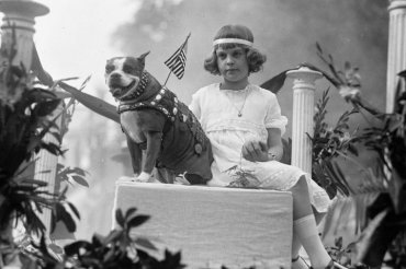 FOR SUNDAY PULSE- PETS - WAR HERO DOGS PICTURED: Miss Louise Johnson & Stubby in animal parade Creator(s): Harris & Ewing, photographer Date Created/Published: 1921 May 13. Medium: 1 negative : glass ; 5 x 7 in. or smaller Reproduction Number: LC-DIG-hec-31070 (digital file from original negative) Rights Advisory: No known restrictions on publication. Call Number: LC-H27- A-2916 [P&P] Repository: Library of Congress Prints and Photographs Division Washington, D.C. 20540 USA http://hdl.loc.gov/loc.pnp/pp.print Notes: Title from unverified caption data on negative or negative sleeve. Gift; Harris & Ewing, Inc. 1955. General information about the Harris & Ewing Collection is available at http://hdl.loc.gov/loc.pnp/pp.hec