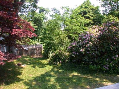 33_Woodlawn_0921 garden