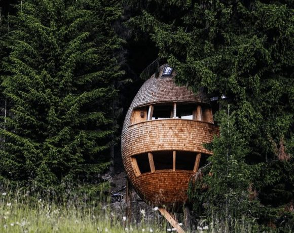Pigna tree house