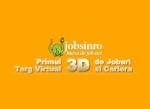 Targul Virtual 3D de cariera , 21 – 30 noiembrie 2011