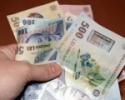 Romanii care au dat in judecata statul isi vor primi banii inapoi pe taxa de poluare in 2012