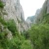 Navigati acum prin portalul Rezervatiei Cheile Turzii