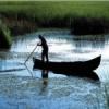 Vara trece, problemele raman… in Delta Dunarii