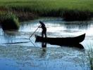 Delta Dunarii este vulnerabila la efectele schimbarilor climatice