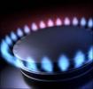 Andreea Paul: Guvernul USL dicteaza pretul gazului