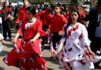 8 aprilie, Ziua Internațională a Rromilor