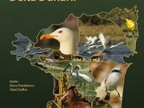 Pasionații de birdwatching beneficiază de o nouă carte