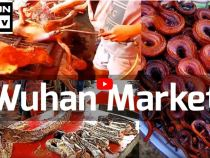 Socant vezi cum arata o piata din Wuhan China (pisici, caini, lilieci)
