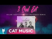 3 Sud Est – Valuri (Addictive+Zyqs+Noisebass Remix)