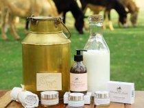 Top 10 beneficii ale laptelui de magarita