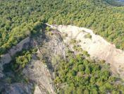 112 dosare penale în 7 zile pentru infracțiuni din domeniul silvic