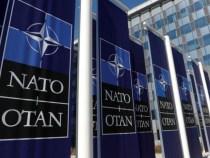 AFP: NATO se desparte de era Trump