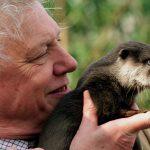 David Attenborough nu va reveni pe Instagram