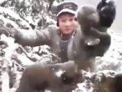 Puii de urs scoși din bârlog nu au fost găsiți