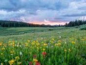 Moldova: Vreme caldă, cu temperaturi constante