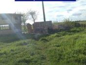 Arad: 25 de câini, ținuți într-o fostă stație de epurare a apei, eliberați de polițiști | AUDIO