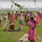 India: Situația sanitară se agravează dar nu se opresc festivalurile cu mii de participanți fără măști