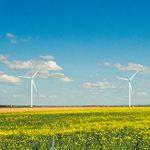 15 iunie, ziua internațională a energiei eoliene