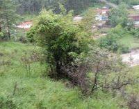IGSU: Zeci de localități afectate de ploile abundete | AUDIO