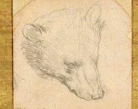 Un desen de Leonardo da Vinci, vândut pentru aproape 9 milioane de lire sterline